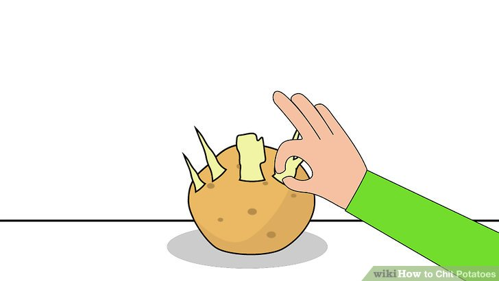 Image titled Chit Potatoes Step 7