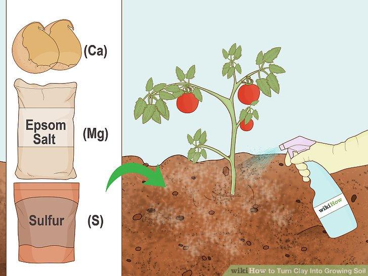 آموزش تبدیل خاک رس به خاک قابل کاشت مرحله  3