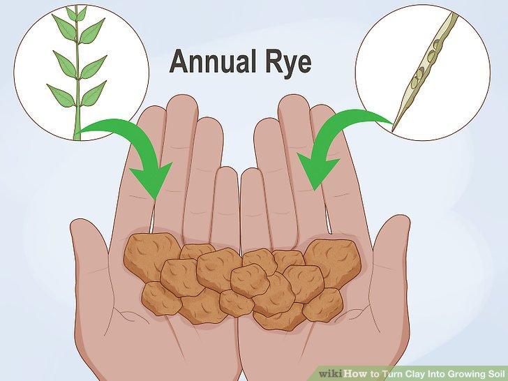 آموزش تبدیل خاک رس به خاک قابل کاشت مرحله  4