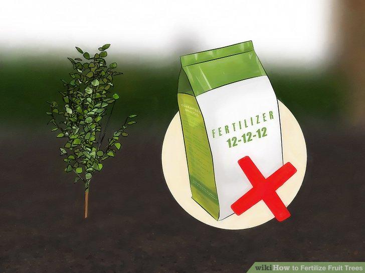 آموزش کود دادن به درختان میوه مرحله 9