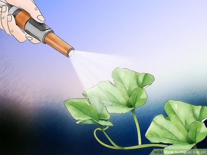 Image titled Adjust Soil pH Step 14
