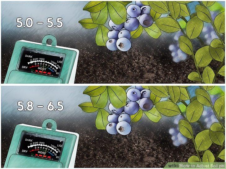 Image titled Adjust Soil pH Step 3