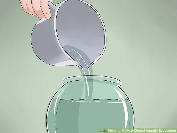 آموزش ساخت تراریوم آبی مرحله 12