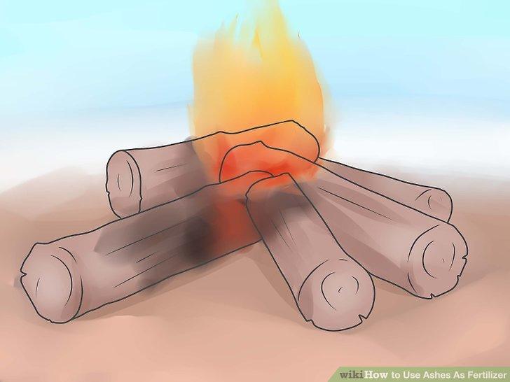 استفاده از خاکستر چوب بعنوان کود مرحله 8