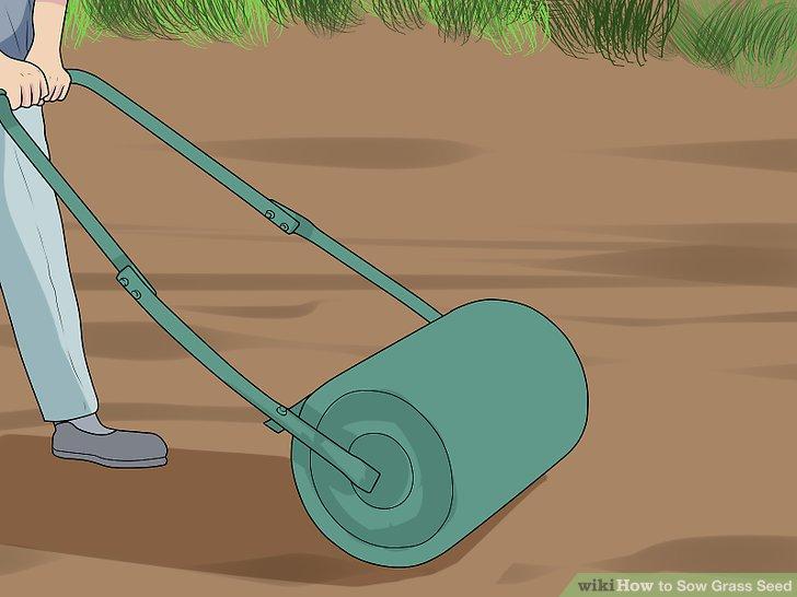 آموزش کاشت چمن با بذر مرحله 9