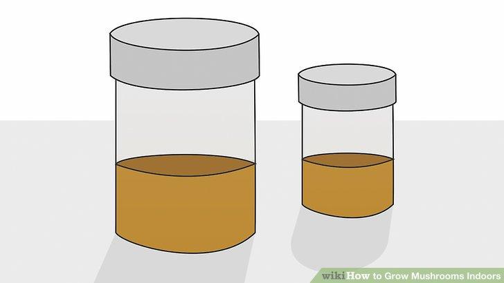آموزش کاشت قارچ در خانه مرحله 7