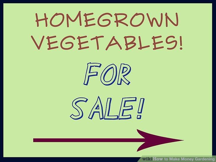 کسب درآمد از فروش محصولات زراعی 5