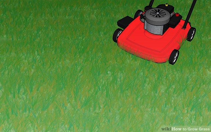 Image titled Grow Grass Step 12