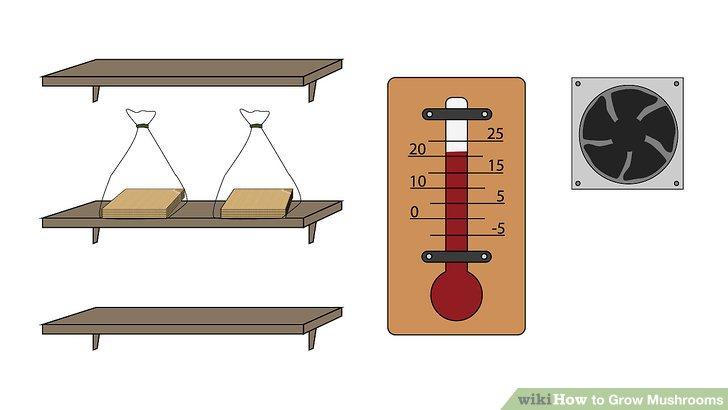 آموزش کاشت قارچ مرحله 14