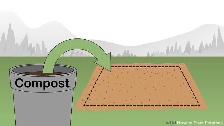 Image titled Plant Potatoes Step 6