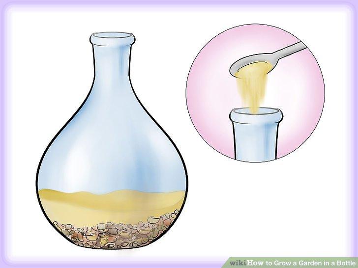 کاشت گیاه در بطری شیشه ای مرحله  3
