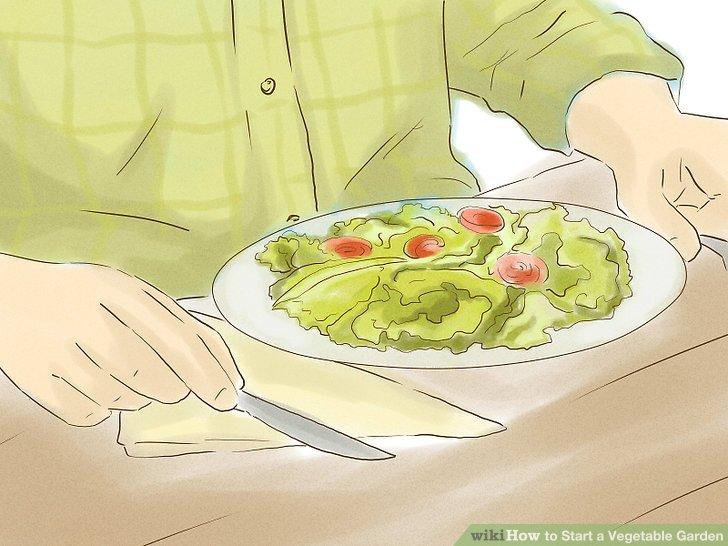 آموزش ايجاد باغ سبزي مرحله 10