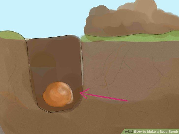 Image titled Make a Seed Bomb Step 5