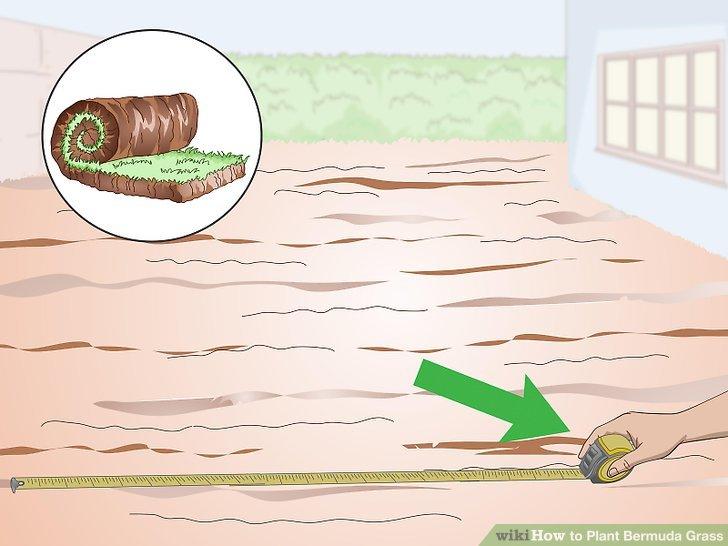 Image titled Plant Bermuda Grass Step 11