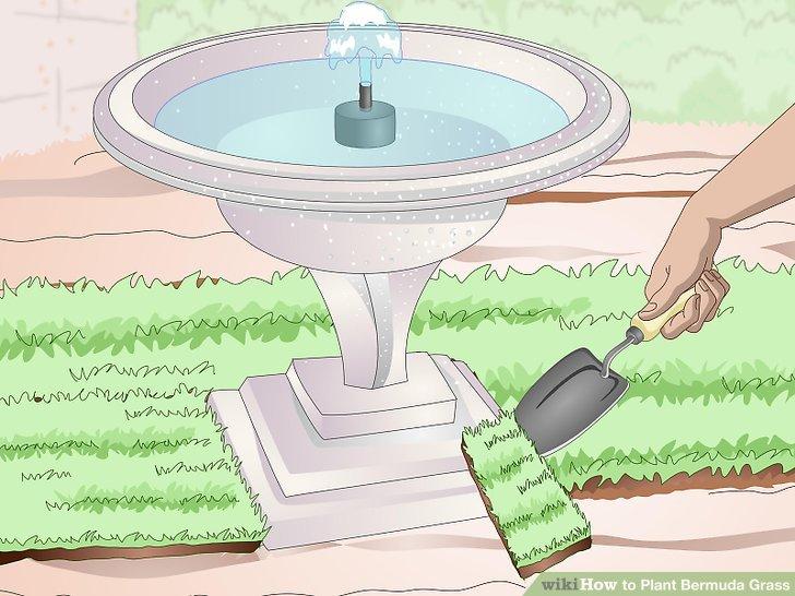 Image titled Plant Bermuda Grass Step 14